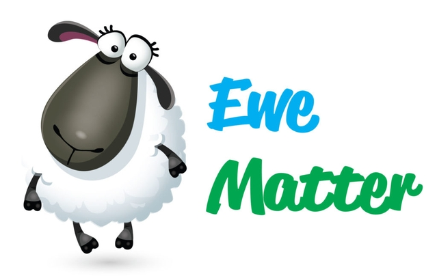 "The ""Ewe Matter"" logo, including a picture of a cute cartoon sheep"
