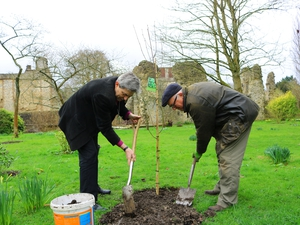 The Diocese of Winchester to plant thousands of trees, starting in Lent